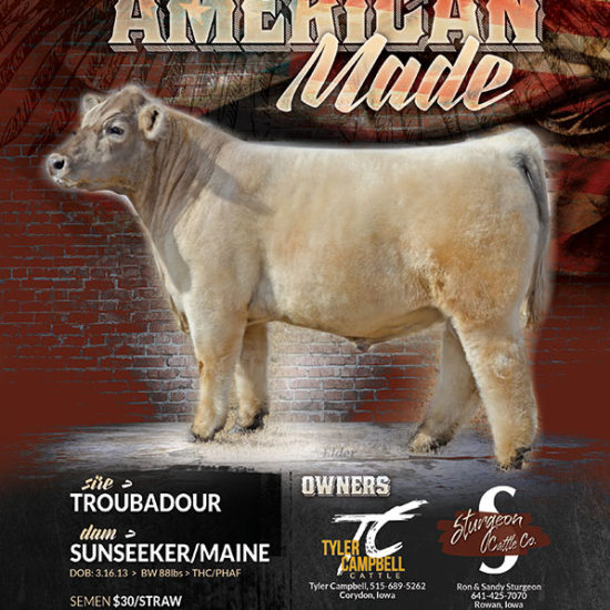 American Made - Sire Promotion