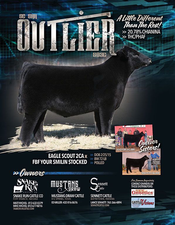 Outlier - Promotional Sire