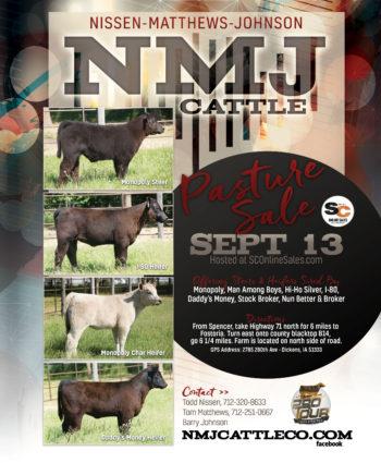 NMJ Cattle - IA