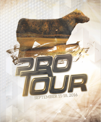 Pro Tour Club Calf Sale - IA