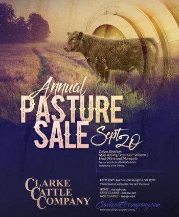 Clarke Cattle Company - SD