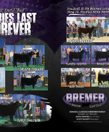 Bremer Show Cattle - IA