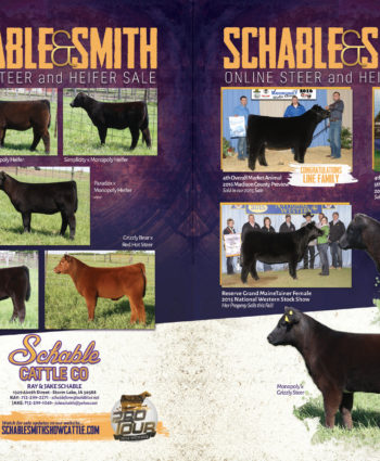 Schable-Smith Show Cattle - IA