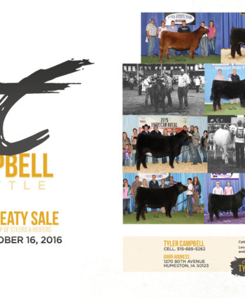 Tyler Campbell Cattle - IA