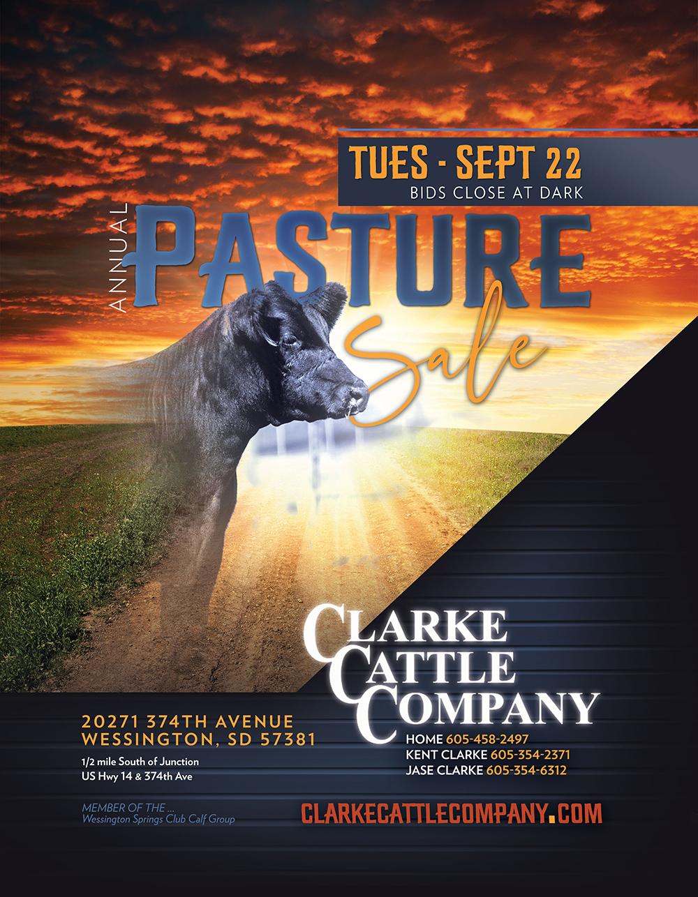 Clarke Cattle Co 2020 Ad